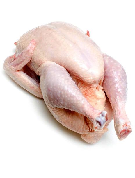 Topkwaliteit Kip en Gevogelte Verschoor Vee- en Vleeshandel